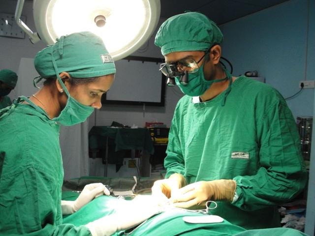 Mild hypospadias repair in adults
